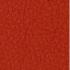 Skóra rot